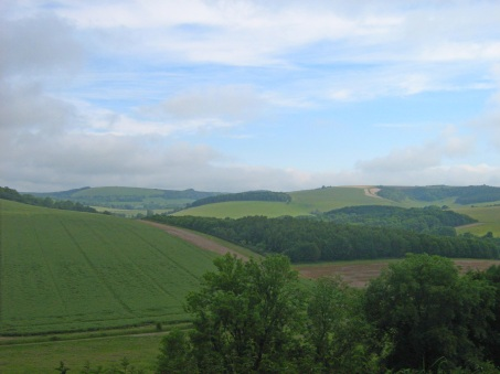 between Combe and Linkenholt.jpg